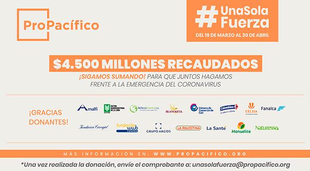 Campaña #UnaSolaFuerza suma $4.500 millones en donaciones, Invest Pacific